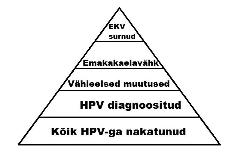HPV püramiid1